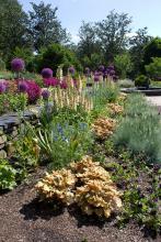 Sarah P Duke gardens.jpg